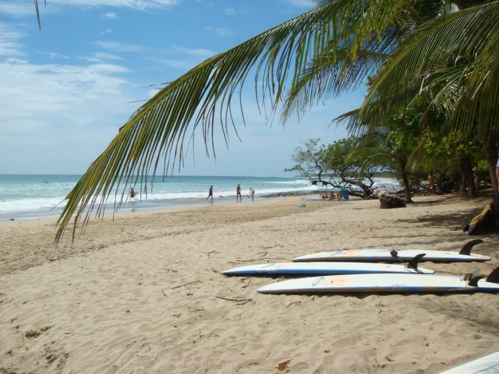 Beach of Avellanas